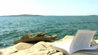 HD: Summer Vacation Scene