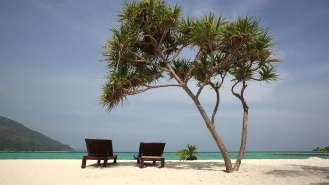 WS Sun loungers next to clear ocean under the shade of a tree