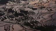 Sun rises over rice paddy terraces, Yuanyang, Yunnan, China