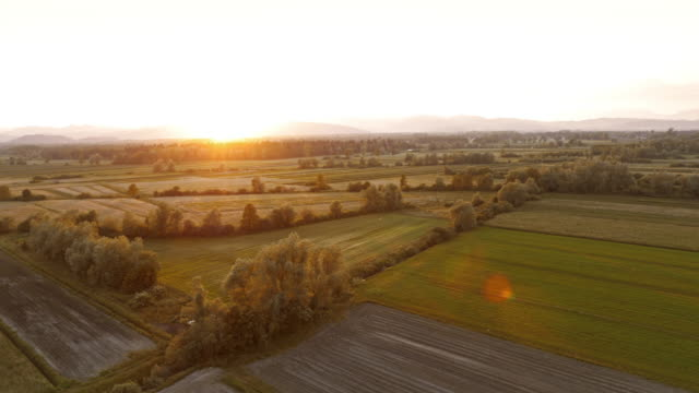 AERIAL Sun setting over fields and meadows