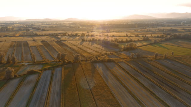 AERIAL Sun setting over fields