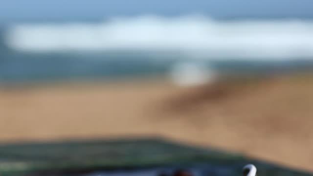 Sunglasses at the coast