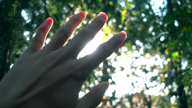 Sonnenlicht durch menschliche Finger