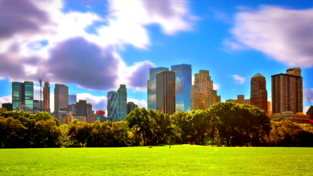 Sunny day in Central Park. NYC