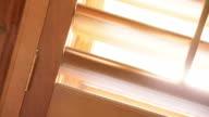 Sunny Fenster