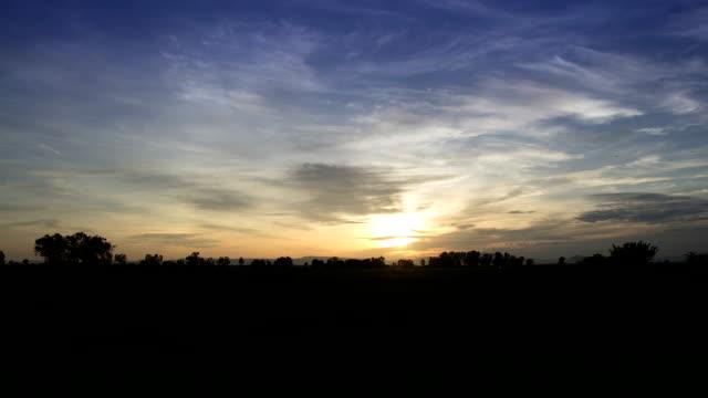 Sunrise on Rice Field