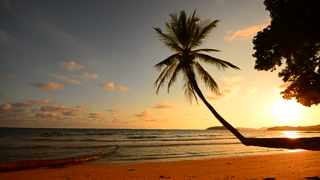 Sunset Beach with Palm Tree on the Island