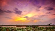 Sunset in reservoir