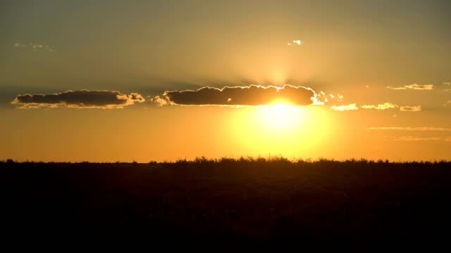 Sunset on savannah in Africa