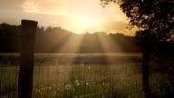 Sonnenuntergang über einem britischen Zaun mit Stacheldraht