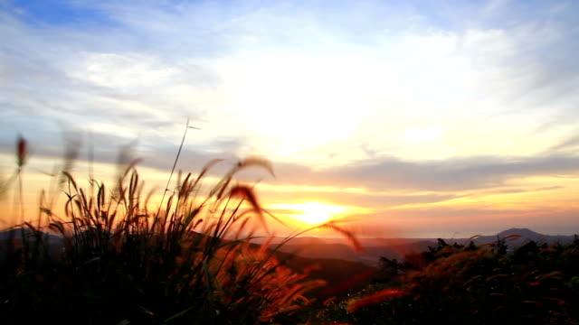 Sonnenuntergang oder Sonnenaufgang auf dem Hügel.