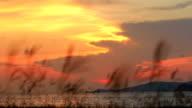 sunset / sunrise