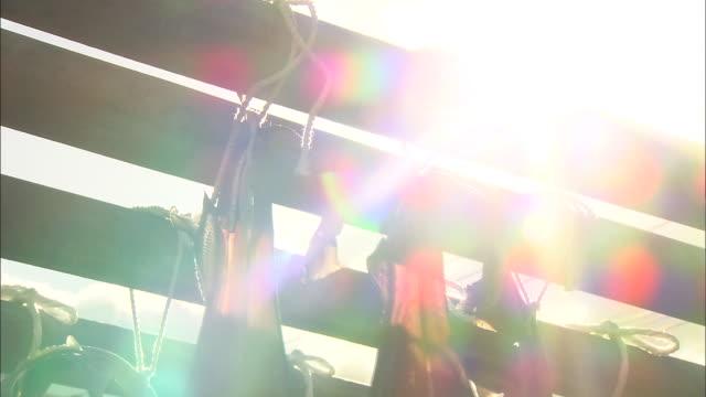 Sunshine beams down on drying houndsharks.