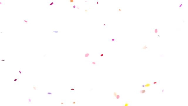 Super Slow Motion Confettis