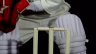 Super Slow Motion HD - Cricket Wicketkeeper stumping