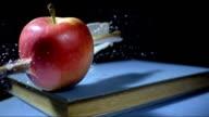 HD Super Slow-Mo: Arrow Stabbing An Apple
