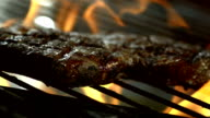HD Super Slow-Mo: Broiling Meat