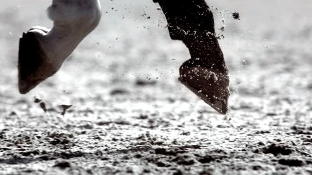 HD Super Slow-Mo: Horse Hooves Galloping And Kicking Sand