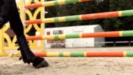 HD Super Slow-motion: Cavallo da tiro sabbia mentre salti