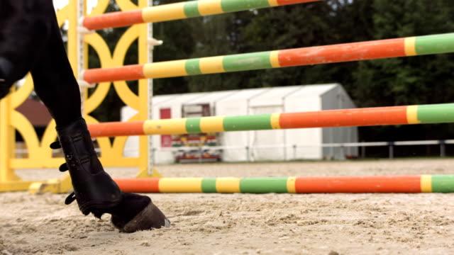HD Super Slow-Mo: Horse Kicking Sand While Jumping