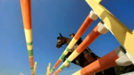 HD Super Slow-Mo: Show Hunter Jumping Over Oxer