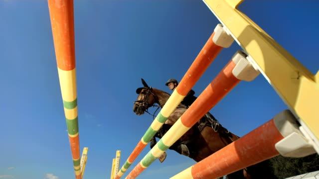 Super Zeitlupe, HD: Hunter springen über Oxer Show