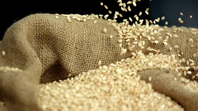 HD Super Slow-motion: Cereali cadere al sacco di grano