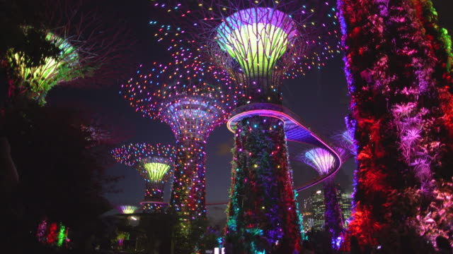 WS Supertrees at night, Singapore