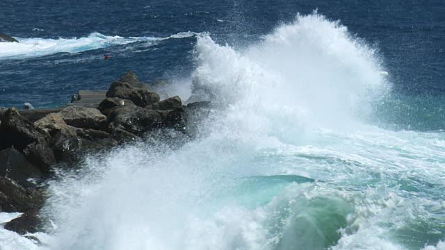 surf on rocks SM 6 speed ramp
