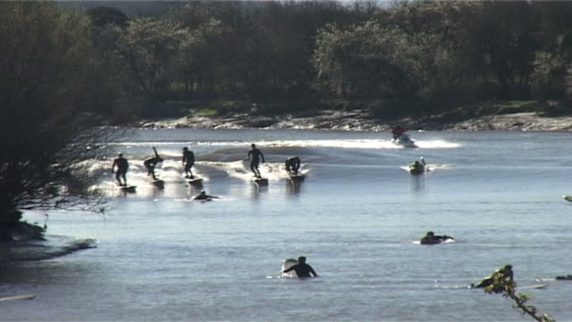 Surfers surfing on Severn Bore. River Severn. UK