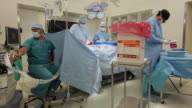 WS Surgical team performing heart transplant in operating room / Seattle, Washington, USA