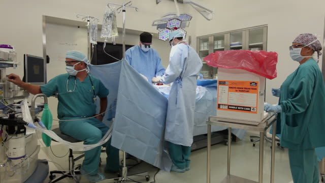 WS Surgical team performing organ transplant in operating room / Seattle, Washington, USA