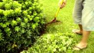 Spazzare foglie