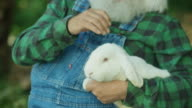 Sweet Santa Claus playing with White Rabbit in the farm.