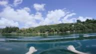 POV Swimming in Lake & Underwater