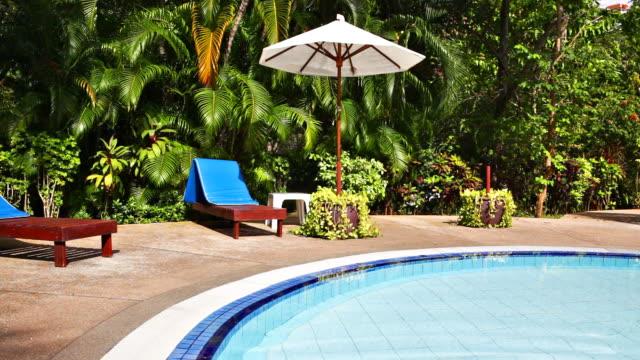 Swimmingpool im tropischen Garten
