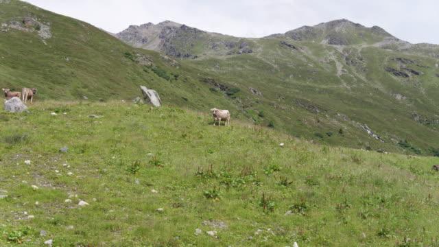 Switzerland_drone_Graubünden