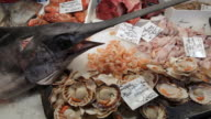 MH LD Sword Fish and Different Types of Seafood in Market / Venice, Italy