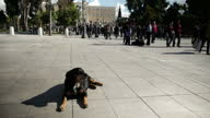 ATHENS Syntagma Square Newspaper and magazine street seller kiosk / exterior back view female Greek Police Officer on patrol / exterior shots various...