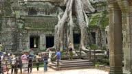 Ta Phrom temple, Angkor wat