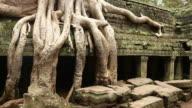 Ta Prohm ruins courtyard panning Angkor Cambodia