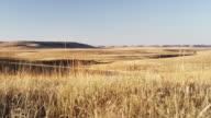 Tall grass prairie at sunset