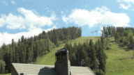 Tall trees and ski lift with blue sky, spring time