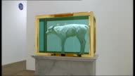 Pop Life Exhibition interviews and general views Damien Hirst spot paintings on display/ Damien Hirst Sheep suspended in glass case/ Damien Hirst...