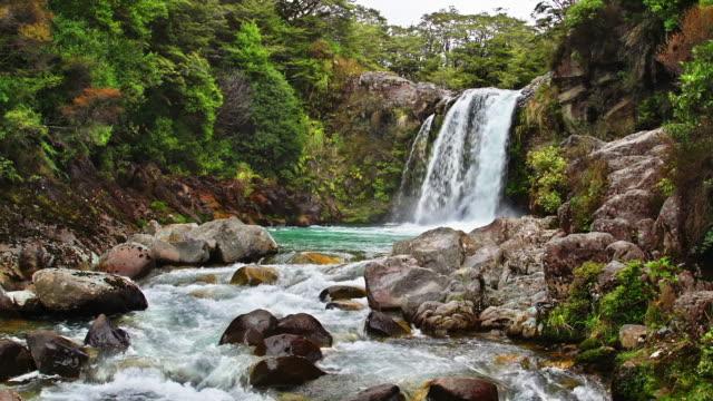 LOOPABLE: Tawhai Falls NZ