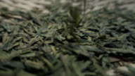 Tea leaves falling