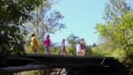 LA, MS, teacher walking with children (8-11) across wooden bridge, Bovina, New York State, USA