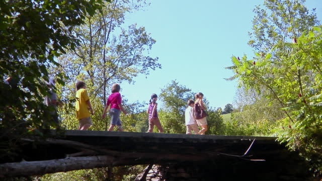 LA, MS, teacher walking with children (8-11) across wooden bridge, Bovina, New York State, USA