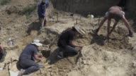 A team of researchers uncovering fossils from a dried up river bed in southern Bulgaria believe they may have found proof that humans diverged from...