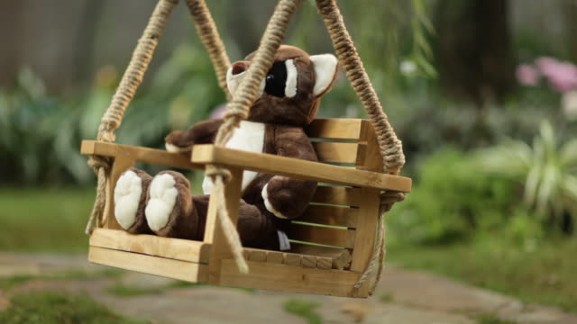 Teddy bear on tree swing